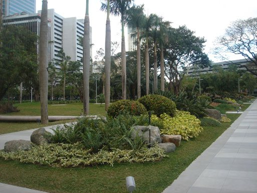 Ayala triangle gardens nice view