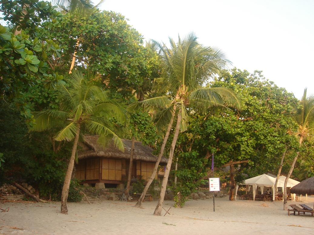 Kawayan Cove is a fairly uncrowded area as half the beach is exclusive