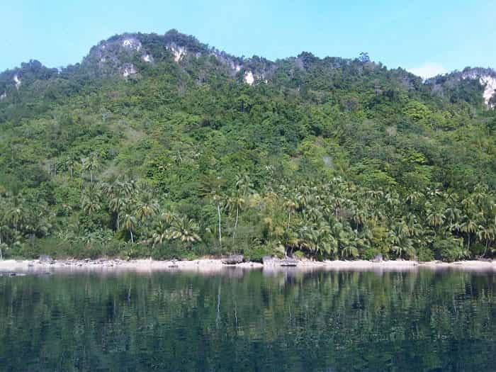 Campomanes Bay Sipalay's Protected Marine Sanctuary