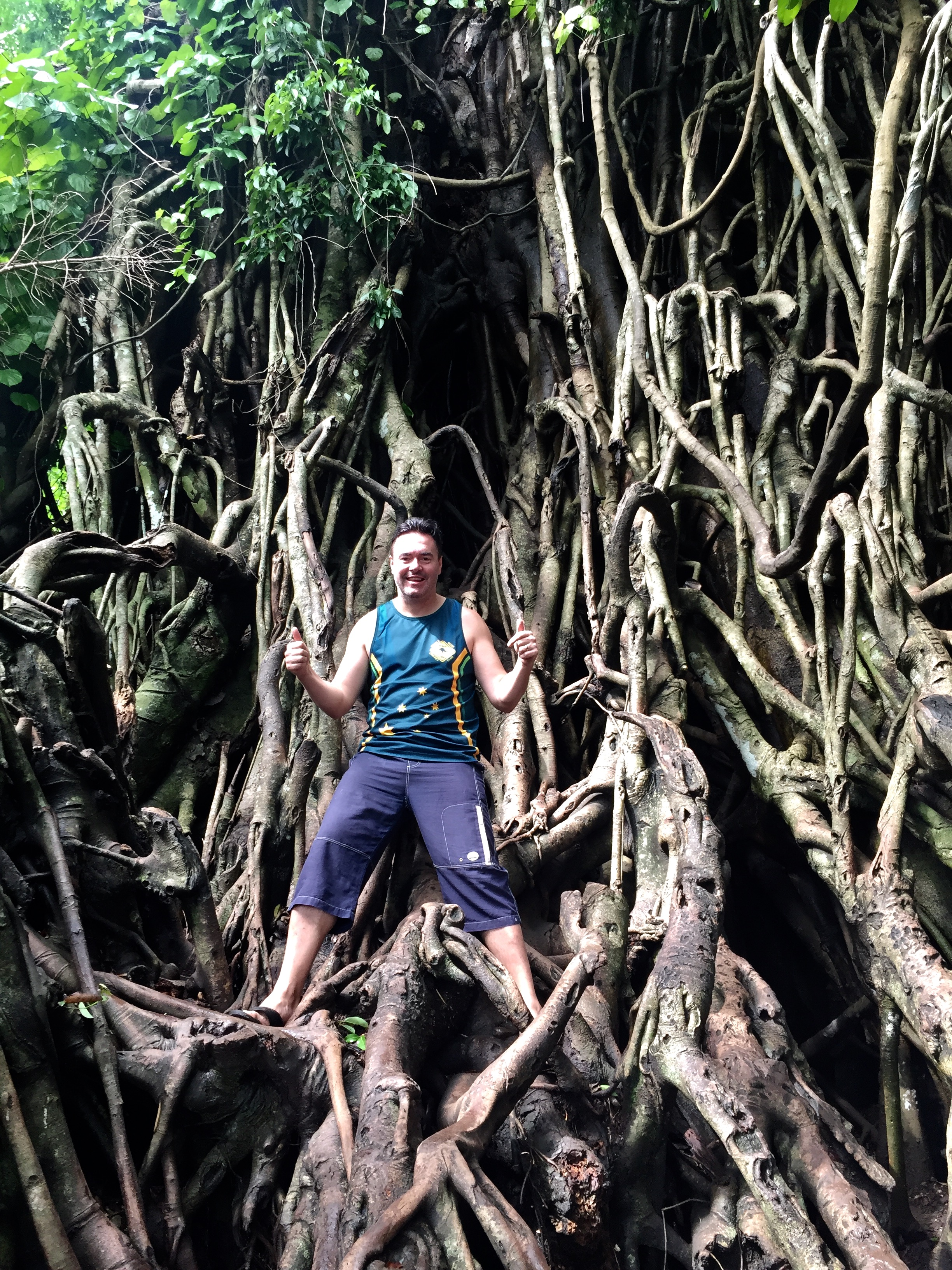"""Millennium Tree"" in Maria Aurora Baler near Dinadiawan Philippines"