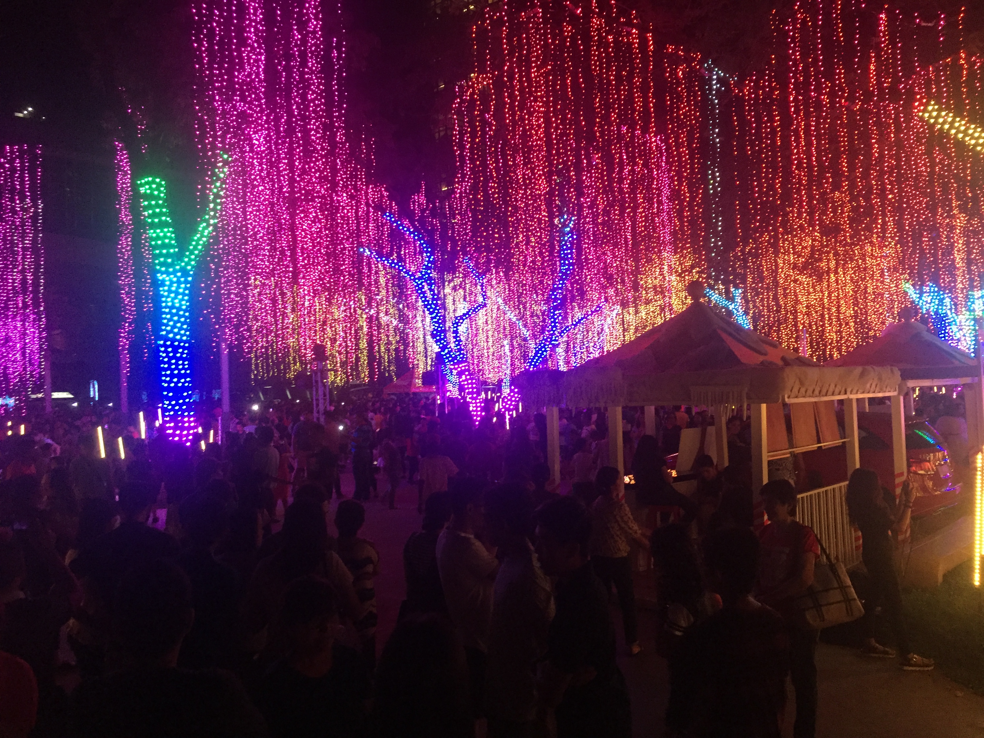 Ayala triangle gardens festival of lights
