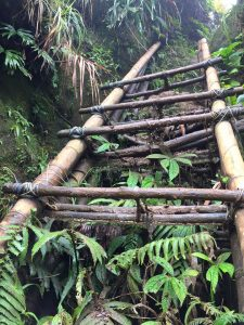 mt makiling hike adventure bamboo ladder