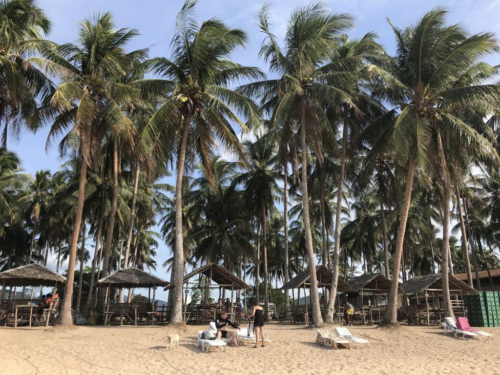 Nacpan Beach nipa huts