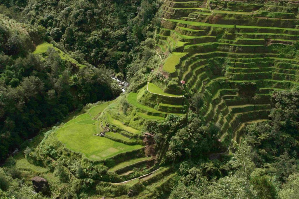 Stay Safe Travelling the Philippines Banaue Rice Terraces