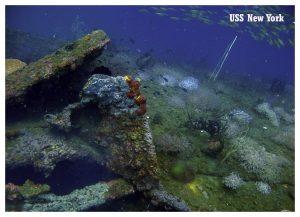 Best Scuba Diving Places Bay